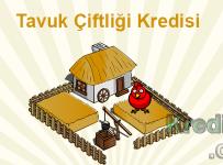 Tavuk Çiftliği Kredisi