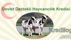 Devlet Destekli Hayvancılık Kredisi 2018