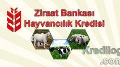 Ziraat Bankası Hayvancılık Kredisi 2018