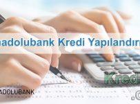 Anadolubank Kredi Yapılandırma