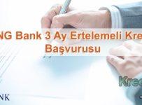 ING Bank 3 Ay Ertelemeli Kredi Başvurusu