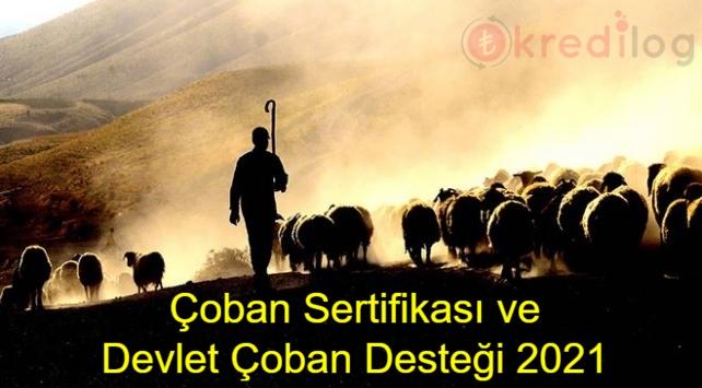 Çoban Sertifikası ve Devlet Çoban Desteği 2021